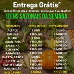 Cesta Agroecológica (Grande)