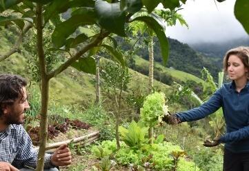 Experiência prática na fazenda ecológica (4-7 dias)